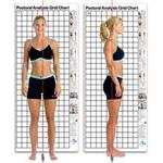 Sit And Reach Box - Postural Analysis Chart - Posture Grid