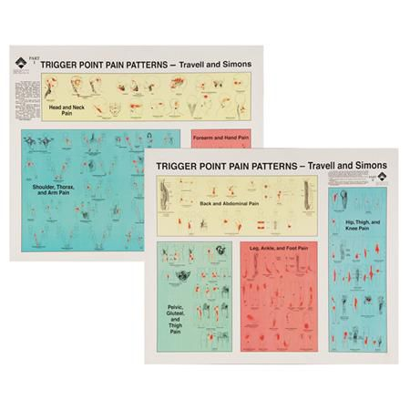 Travell Trigger Point Wall Chart Set Of 2 Laminate