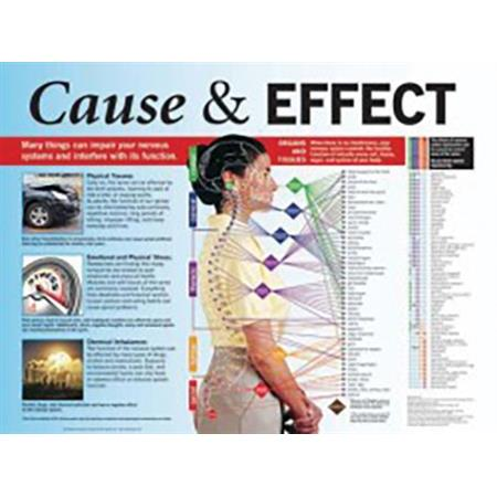 Cause and Effect Poster