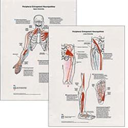 Peripheral Entrapment Neuropathics 2 Chart Set