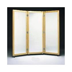 3-Way Posture Mirror W/ Casters