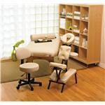NRG® Karma Package - Includes Karma Massage Table, Grasshopper Massage Chair, Rolling Stool, Full Round Bolster and Lotus Touch Organic Naturals Bamboo Silk Lotion