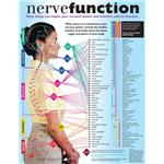 Nerve Function Handouts 50 Pack