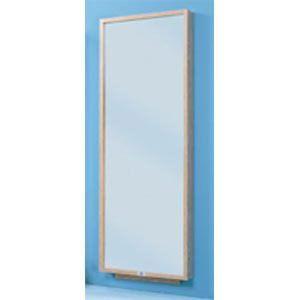 Wall Mount Posture Mirror