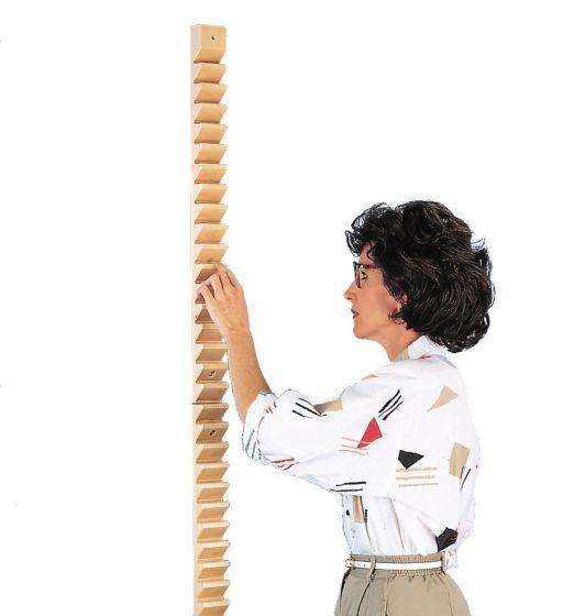 Hausmann Shoulder Ladder