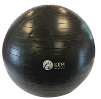 100% Chiropractic 65cm Exercise Ball Black