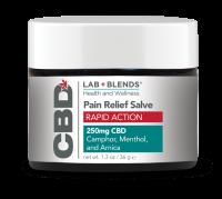 Lab Blends™ CBD Pain Salve Rapid Action Relief - 1.3 oz by BIOTONE®